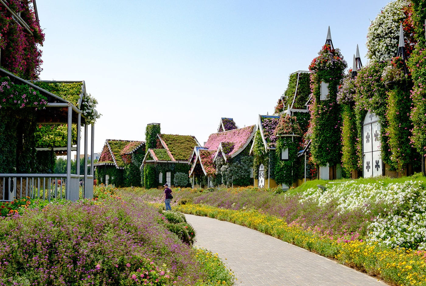 Dubai Miracle Garden Compare Ticket Prices From Different Websites To Find The Best Deal